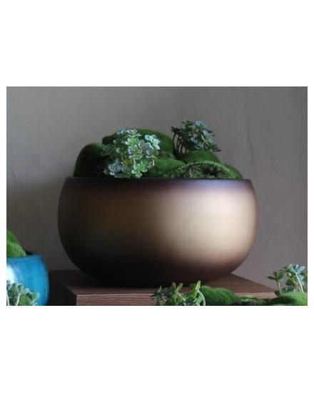 Natural Moss Cooper